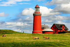 Lighthouse in Denmark Royalty Free Stock Photos