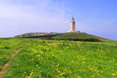 Lighthouse at the distance in a green field. Green field with yellow flowers and a roman lighthouse up the hill stock images