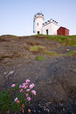 Lighthouse at dusk with flowers in foreground Royalty Free Stock Images