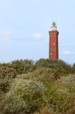 Lighthouse Dutch coast Royalty Free Stock Photo