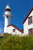 Lighthouse with flowers Stock Images
