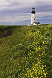 Lighthouse and flowers Stock Image
