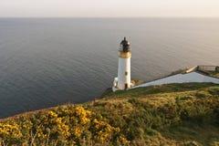 Lighthouse and gorse, Isle of Man stock image