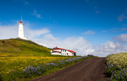 Lighthouse in Iceland Royalty Free Stock Photo