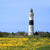 The lighthouse of Kampen on the Island of Sylt in  Royalty Free Stock Photography