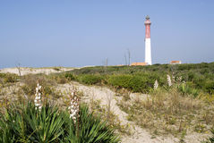 Lighthouse of La Coubre in France Stock Photos