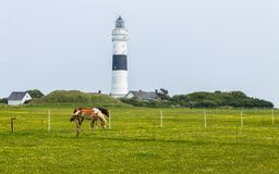 Lighthouse `Langer Christian` inside a Dune Landscape with Farm and Horses. On a clear day. stock image