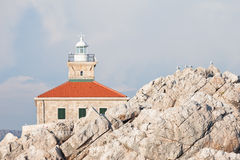 Lighthouse and mews Royalty Free Stock Photos