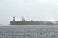 Lighthouse at Newhaven Harbour Royalty Free Stock Photo