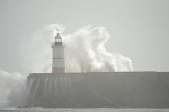Lighthouse at Newhaven Harbour Royalty Free Stock Image