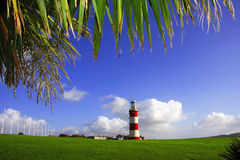 Lighthouse with a palm tree Stock Photo
