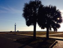 Lighthouse palm tree shot Royalty Free Stock Photography