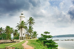 Lighthouse and palm trees Royalty Free Stock Photos
