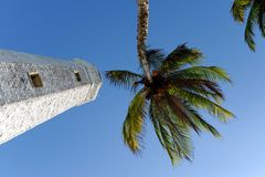Lighthouse between palms Royalty Free Stock Images