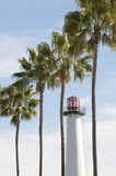 Lighthouse and Palms Stock Images