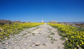 Lighthouse at Paphos, Cyprus Stock Images
