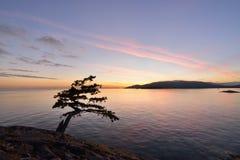 Lighthouse Park - Juniper Point Stock Photos