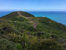 Lighthouse and pathway at Cape Reinga, Northland, New Zealand Stock Photo
