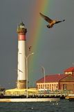 Lighthouse and rainbow. With seagull in flight in the foreground Royalty Free Stock Image