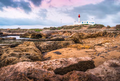 Lighthouse on the rocks Royalty Free Stock Photography