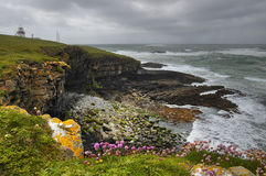 Lighthouse at the Shore. Atlantic shore with cliffs and lighthouse in background. County Donegal, Ireland Stock Image