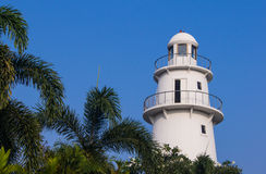 Lighthouse with skyblue. And palmtree stock image