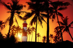 Lighthouse at sunset. Lighthouse around palm trees at orange sunset sky in Kovalam, Kerala, India stock images