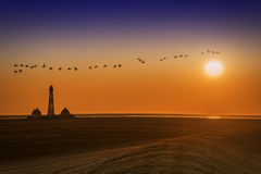 Lighthouse on sunset with birds Royalty Free Stock Images