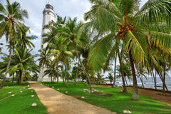 Lighthouse surrounded by palm trees Royalty Free Stock Photography