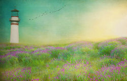 The  Lighthouse   textured meadow landscape Stock Photos