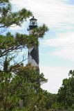 Lighthouse Through The Trees Stock Image