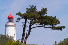 Lighthouse with tree Stock Photos