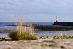 Small red and white lighthouse Royalty Free Stock Images