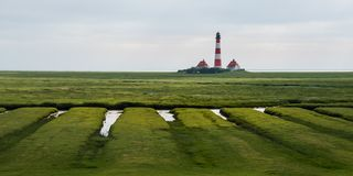 Lighthouse westerhever sheep field Sankt Peter Ording stock photos
