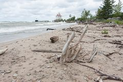 Lighthouse With Driftwood On Lake Erie Royalty Free Stock Photography