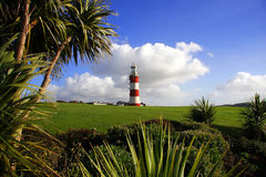 Lighthouse With Palm Tree, Plymouth, UK Royalty Free Stock Photos