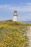 Lighthouse and yellow flowers Royalty Free Stock Photo
