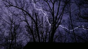 Lighting bolt through the trees Royalty Free Stock Photo