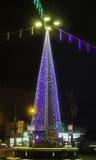 Lighting christmas tree Royalty Free Stock Image