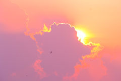 Lighting cloud on the sky. Royalty Free Stock Photo