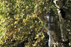 Parque de Maria Luisa (Maria Luisa Park), Seville, Spain Stock Images