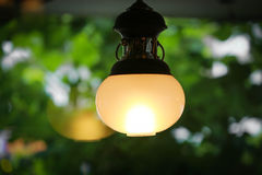 Lighting decor on green background Royalty Free Stock Images