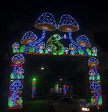 Lighting Decoration at Durga Puja Festival Stock Photography