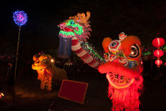 Lighting Dragons and Lion in Chinese New Year. Royalty Free Stock Photo