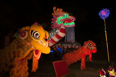 Lighting Dragons and Lion in Chinese New Year. Stock Photography