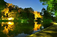 Lighting effect on trees by a pond at botanical garden Stock Image