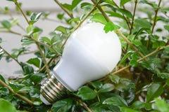 Lighting of LED bulb stock images