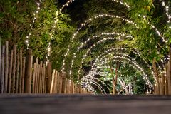 Lighting line hang on to the tree decor on to cave concept on the wood terrace walking way with darken around
