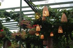 Lighting park. Magic lighting park, colorful magic led light decorate the park Royalty Free Stock Photos