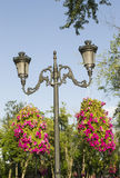 Lighting pole and flowers Royalty Free Stock Image